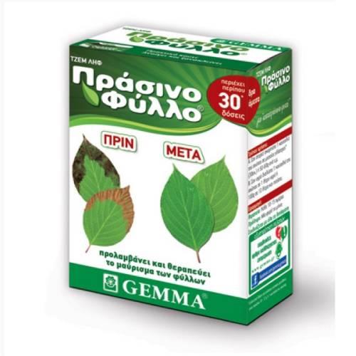 Πράσσινο φύλλο τζεμ ληφ 500γ