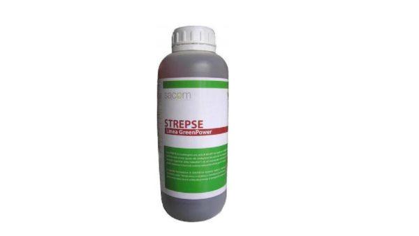 Microspore Strepse
