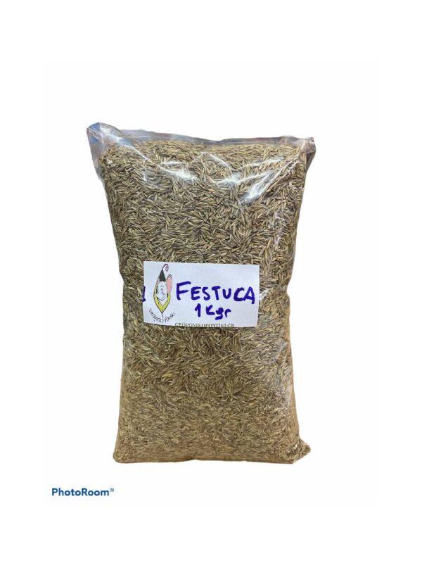 Σπόροι Γκαζόν Festuca, Essential 1kg