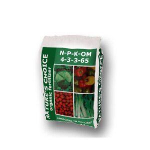 Μαρούλι κόκκινο(λόλα)