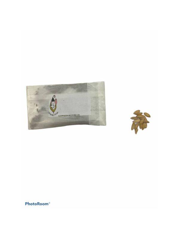 Μελιτζάνα τσακώνικη
