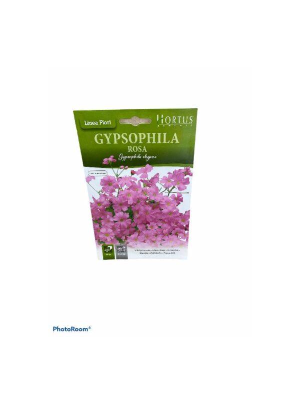 Γυψοφίλη ροζ