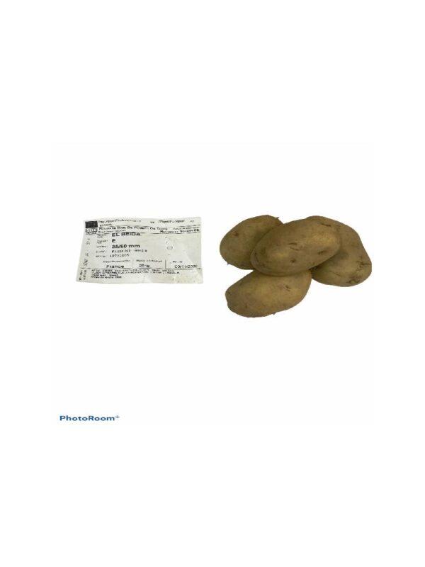 """Σπόρος (Ποικιλία) Πατάτας EL BEIDA """"ΕΛ ΜΠΕΪΝΤΑ''35/60mm"""