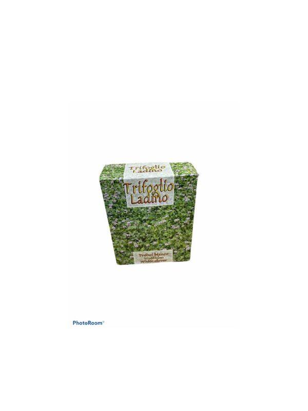 Trifolium reppens ladino τριφύλλι