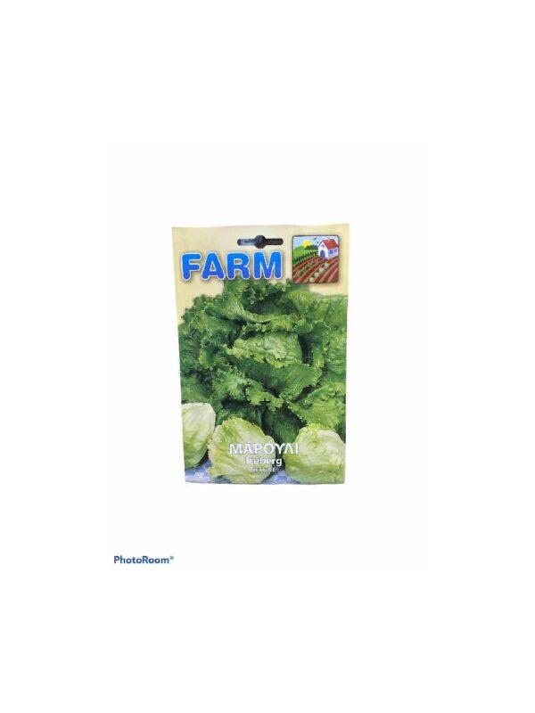 Μαρουλι iceberg lettuce