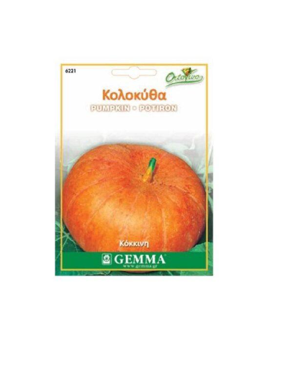Κολοκύθα στρογγυλή πορτοκαλί